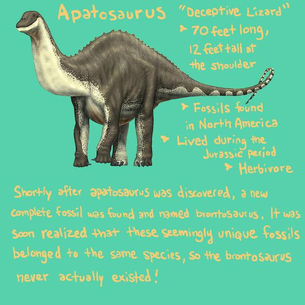 apatosaurusdraft