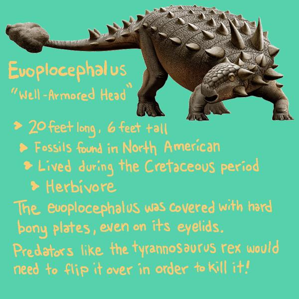 euoplocephulus