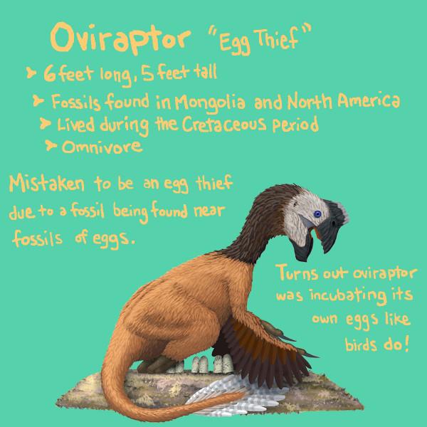 oviraptordraft