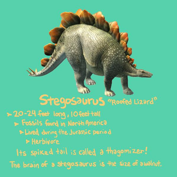 stegosaurusdraft